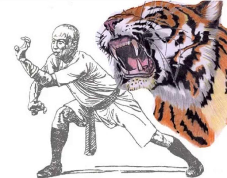 Hung Gar Tiger